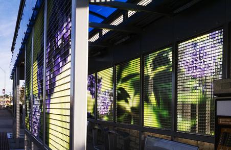 公交车站变身虚拟花园 (11)