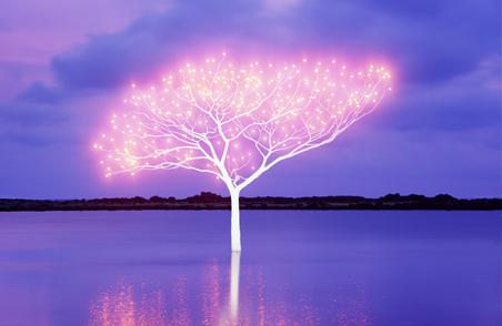 光影涂鸦 打造令人沉醉的大自然景观 (17)